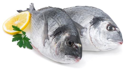 peces planos