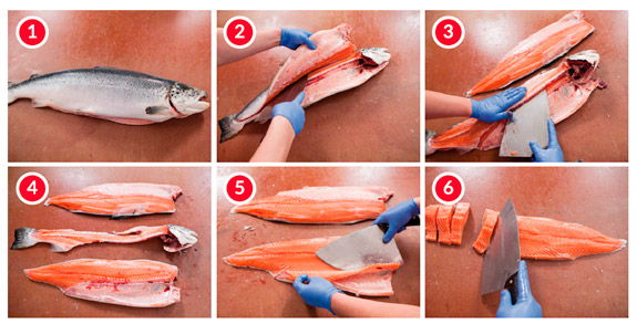despiece-salmon